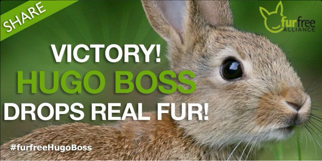 2015-07-06 14_30_03-Humane Society Int'l on Twitter_ _FUR FREE VICTORY! We're thrilled that @HUGOBOS